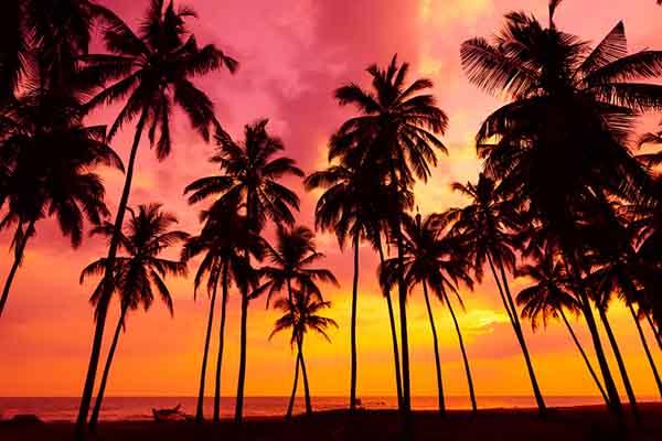 Caribbean Spice Islands Seabourn Odyssey 2022-01-22
