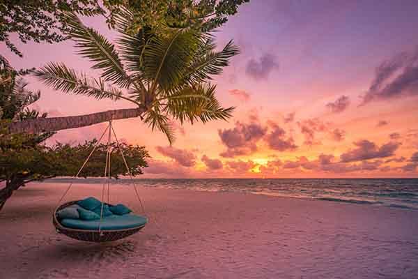 Classic Caribbean Wind Surf 2022-12-10